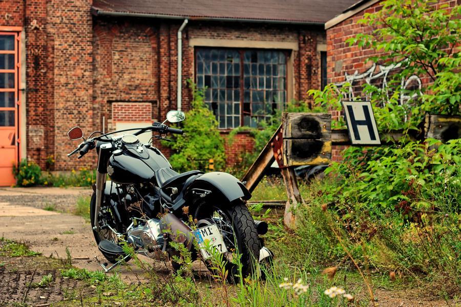 Harley Poller