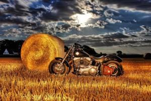 Harley Feld HDR